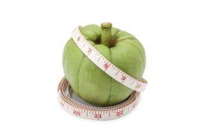 garcinia cambogia frutto