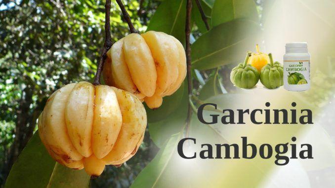 garcinia cambogia nome locale in filippine
