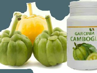 Garcinia Cambogia puro vendita