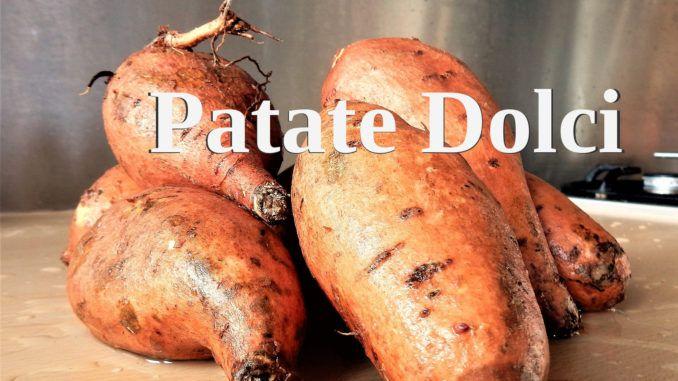 le patate dolci contengono grassino