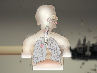Ripulire i polmoni dal fumo