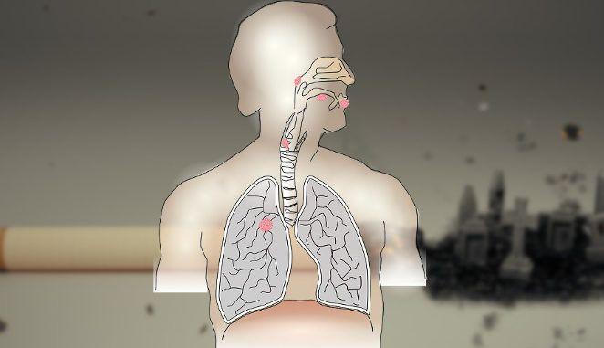 Quando si smette di fumare si.puliscino.i polmoni