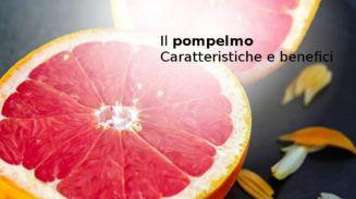 Pompelmo, caratteristiche e benefici